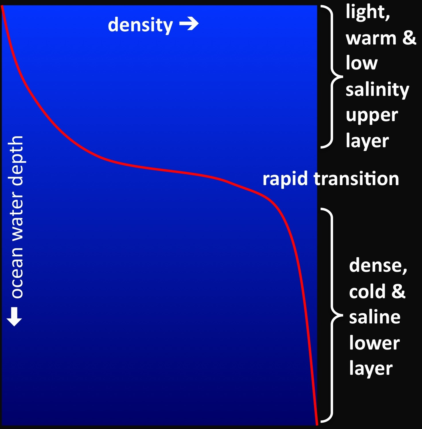 Idealized schematic of ocean denisty variability with depth